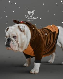 ropa de navidad para perros, saco de reno para erro Bulldog ingles navidad