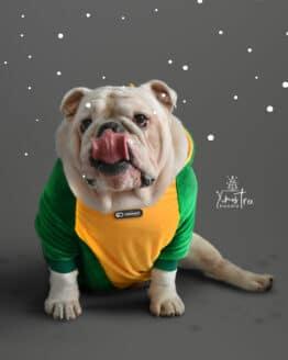 ropa de navidad para perro arbol de navidad saco navideño para bulldogs