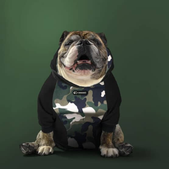 Buzo Saco hoodie camuflado para perros bulldogs army