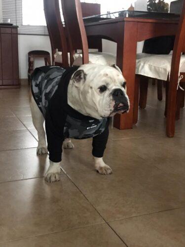 Buzo, Saco, Hoodie Negro combinado photo review