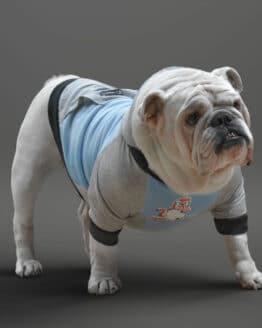 ropa para perro Buzo buso bullicorn Saco hoodie buzo para perros saco hoodie colores para perros bulldogs perros gordos