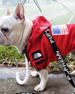 Chaquetas mascota Ropa de perro de moda negra Bulldog francés Pupreme camisa perro Camo rompevientos deporte Retro Sudadera con capucha para perro mascotas ropa_Abrigos y chaquetas para perro_