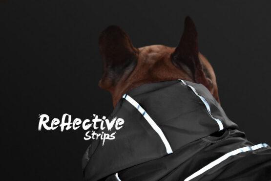 Chaqueta rompevientos reflectiva neon marca gordogs para perros siete tallas