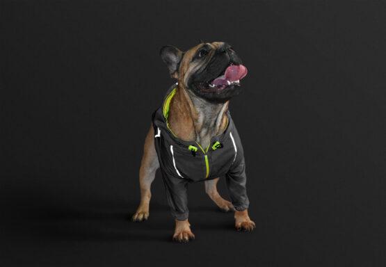 Bulldog Frances Chaqueta rompevientos reflectiva neon marca gordogs para perros siete tallas