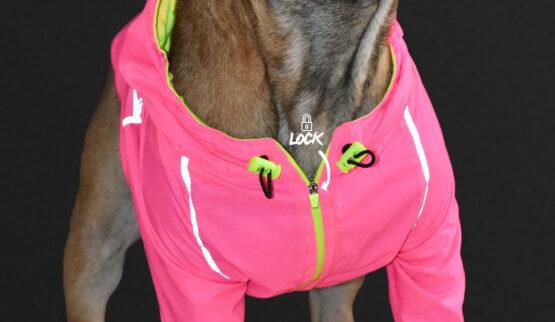 Detalle Chaqueta rompevientos reflectiva neon marca gordogs para perros siete tallas