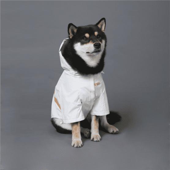Chaqueta para perro reflectiva Nasa impermeable mascotas todas las tallas. Gordogs