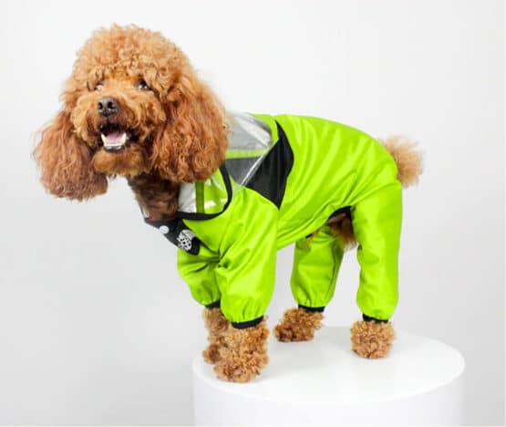Enterizo Impermeable para lluvia dogface by gordogs ropa para perros capa de lluvia