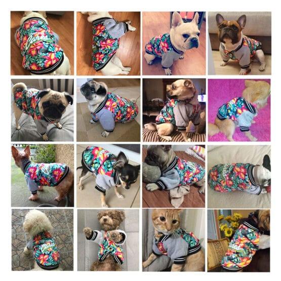 Varios perros con Chaqueta térmica para perros pequeños y medianos, gatos Hawaii aloha Flores abrigo para perros