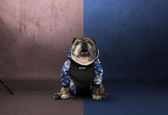 Ropa para perros Gordogs bulldogs y sus amigos hoode o saco camuflado militar